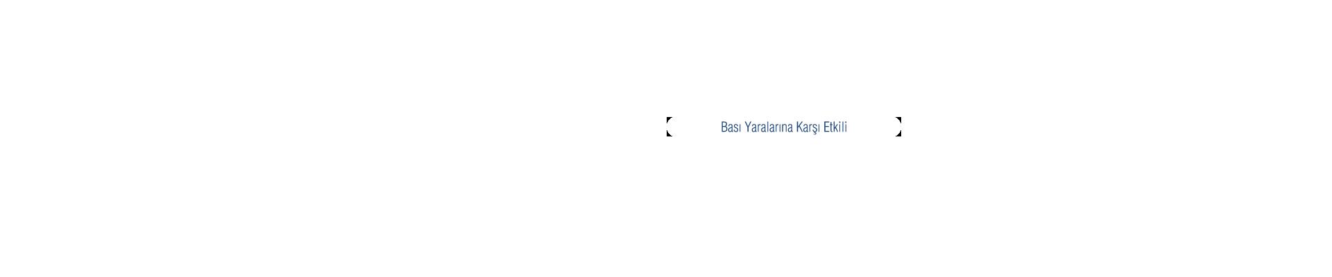 Banner Bedaid Tekerlekli Sandalye Minderi  Kutu1